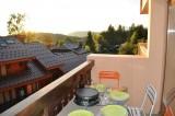 balcon-grands-vans-les-carroz-2895643