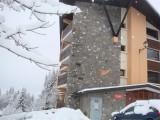 immeuble-grands-vans-les-carroz-2895641