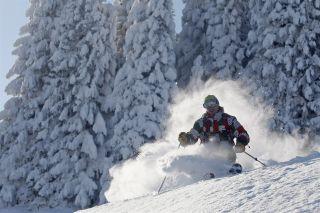 ski-hors-piste-poudreuse-cervos-73193