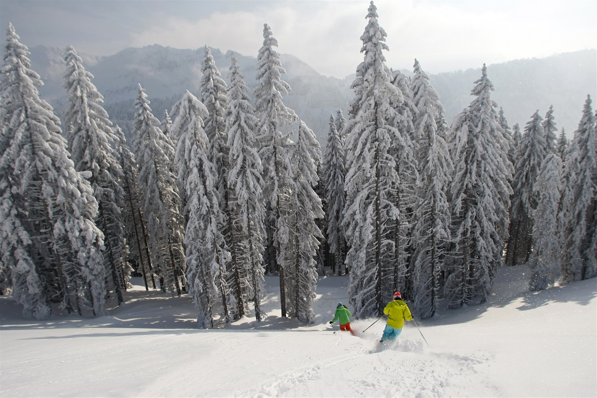 forfait ski grand massif 6 jours. Black Bedroom Furniture Sets. Home Design Ideas